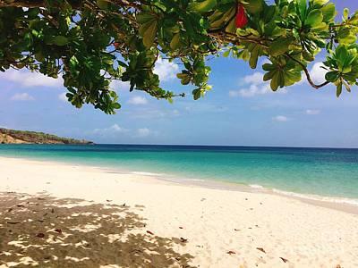 Photograph - Grand Anse Beach by Laura Forde