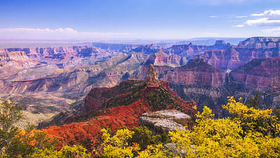 Shrub Photograph - Grand Arizona by Chad Dutson