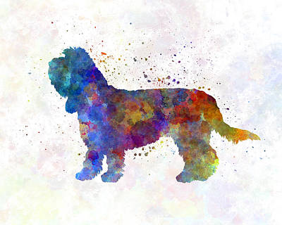 Griffon Painting - Grand Basset Griffon Vendeen In Watercolor by Pablo Romero
