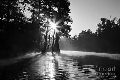 South Louisiana Photograph - Grand Bayou Morning by Scott Pellegrin