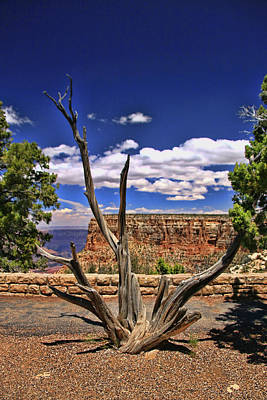 Photograph - Grand Canyon # 11 - Moran Point by Allen Beatty