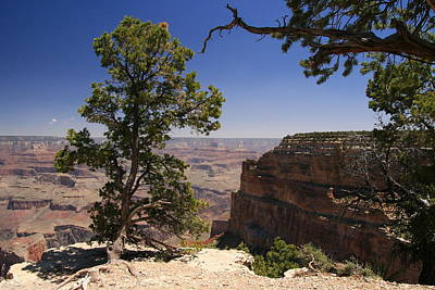 Photograph - Grand Canyon # 28 - Mohave Point  by Allen Beatty