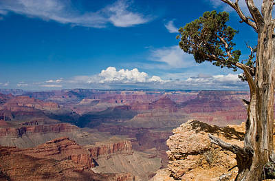 Landscape Photograph - Grand Canyon - Living On The Edge by Mike Hendren