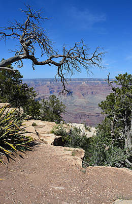Photograph - Grand Canyon 2 by Aimee L Maher ALM GALLERY