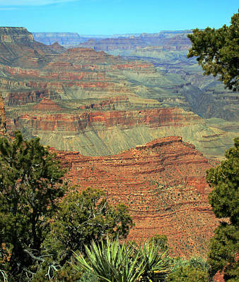 Photograph - Grand Canyon 3 by Ellen Henneke