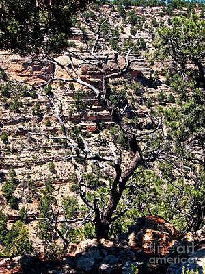 Sk Stones Photograph - Grand Canyon-3 by Sabrina K Wheeler
