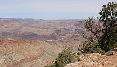 Photograph - Grand Canyon - 5 by Christy Pooschke