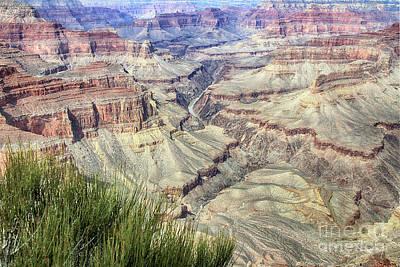 Photograph - Grand Canyon 9 by Teresa Zieba