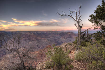 Grand Canyon 991 Art Print