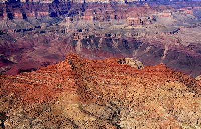 Photograph - Grand Canyon by Aidan Moran