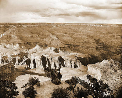 Photograph - Grand Canyon Arizona Fine Art Photograph In Sepia 3525.01 by M K Miller