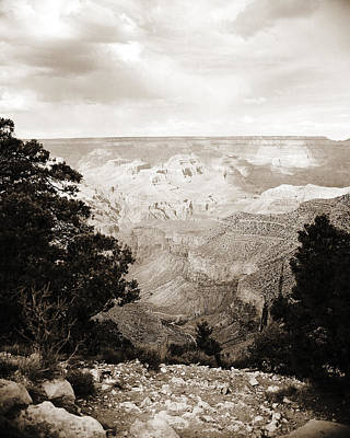 Photograph - Grand Canyon Arizona Fine Art Photograph In Sepia 3529.01 by M K Miller