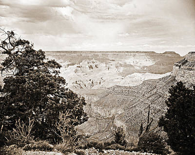 Photograph - Grand Canyon Arizona Fine Art Photograph In Sepia 3530.01 by M K Miller