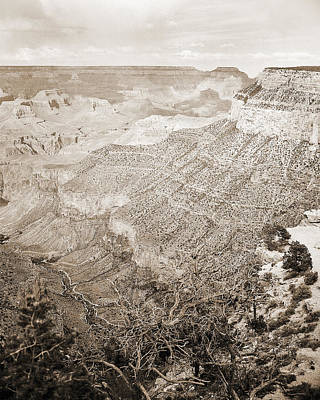 Photograph - Grand Canyon Arizona Fine Art Photograph In Sepia 3531.01 by M K Miller