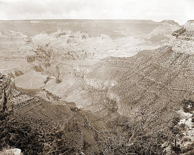 Photograph - Grand Canyon Arizona Fine Art Photograph In Sepia 3532.01 by M K Miller