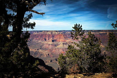 Photograph - Grand Canyon, Arizona Usa by James Bethanis
