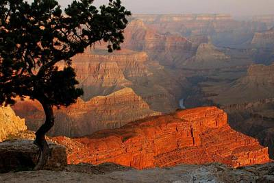 Grand Canyon At Sunrise Art Print by Stephen  Vecchiotti