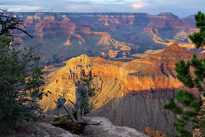 Photograph - Grand Canyon At Sunset by Alan Toepfer