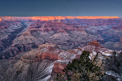Photograph - Grand Canyon Blue Hour by Gej Jones