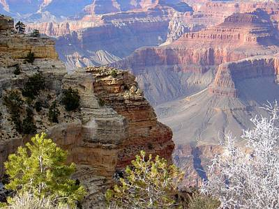 Photograph - Grand Canyon Cliffs by Carolyn Jacob