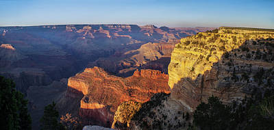 Photograph - Grand Canyon Evening by Shelly Gunderson