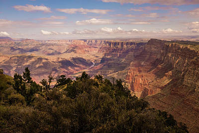 Photograph - Grand Canyon From South Rim by Frank DiMarco