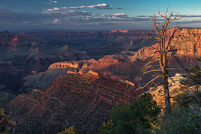 Photograph - Grand Canyon by Gary Lengyel