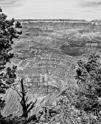 Photograph - Grand Canyon In B-w by Steven Parker