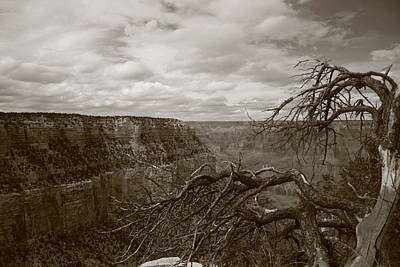 Photograph - Grand Canyon In Black And White by Christopher Kirby