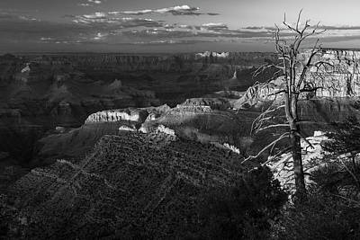 Photograph - Grand Canyon In Black And White by Gary Lengyel