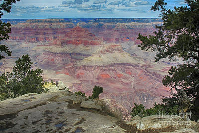 Photograph - Grand Canyon In Spring by Ruth Jolly