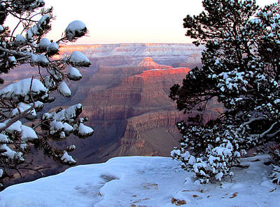 Photograph - Grand Canyon In Winter by Judy Wanamaker