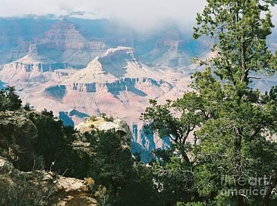 Photograph - Grand Canyon by Iris Greenwell