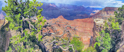 Photograph - Grand Canyon Ix by C H Apperson