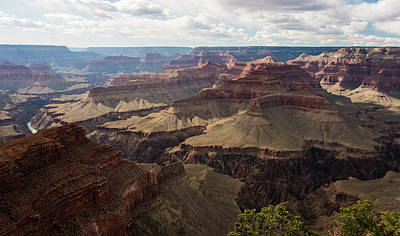 Photograph - Grand Canyon by Jennifer Ancker