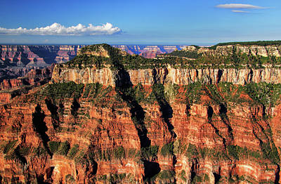 Photograph - Grand Canyon Layers by Carolyn Derstine