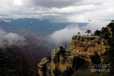 Photograph - Grand Canyon National Park Arizona by Bob Pardue