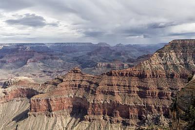 Owls - Grand Canyon No. 3 by Belinda Greb