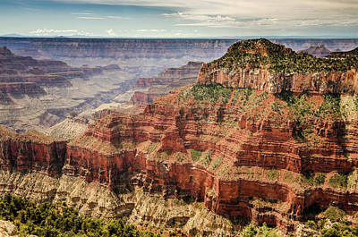 Photograph - Grand Canyon North Rim by Debra Martz