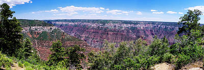 Photograph - Grand Canyon North Rim View by Shelly Gunderson