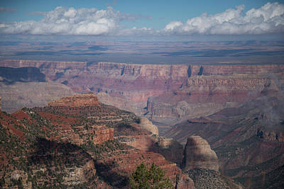 Photograph - Grand Canyon North Rim Vista Encantada 4 by Frank Madia