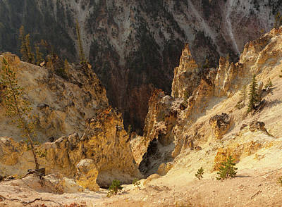 Photograph - Grand Canyon Of The Yellowstone by Cliff Wassmann