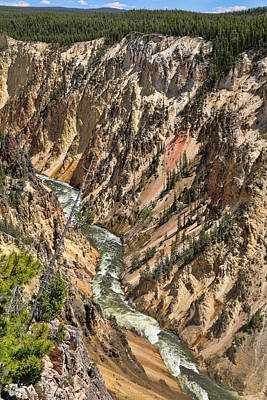 Photograph - Grand Canyon Of The Yellowstone  by Dan Sproul
