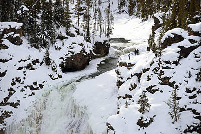 Photograph - Grand Canyon Of The Yellowstone by Harvey Barrison