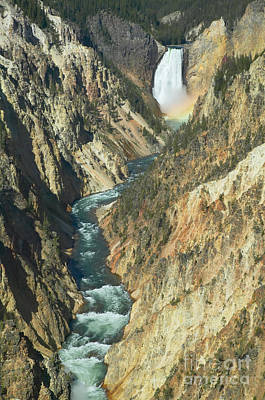 Photograph - Grand Canyon Of The Yellowstone I by Clarence Holmes