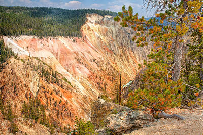 Photograph - Grand Canyon Of The Yellowstone by John M Bailey