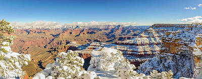 Photograph - Grand Canyon Panorama by Mike Ronnebeck