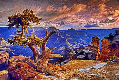 Grand Canyon Pine Art Print by Dennis Cox WorldViews