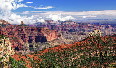 Photograph - Grand Canyon Point Imperial View by Carolyn Derstine