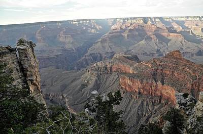 Grand Canyon Original by Sonja Dover